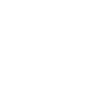 JBL New York City Logo Lipsync